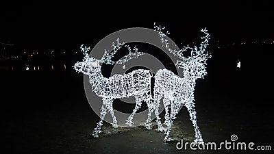 dezembro em Kaunas, Lituânia Atmosfera do Natal da cidade na noite Cervos de Illuminanited na frente do castelo de Kaunas vídeos de arquivo