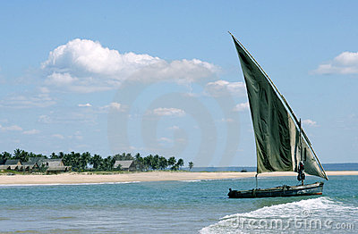 Dhow anchored off an island
