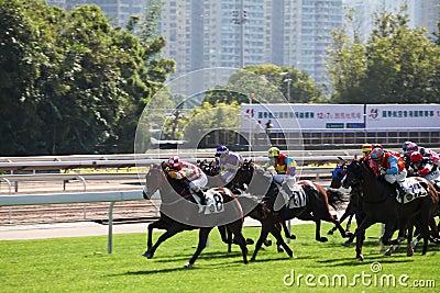 Dia de competência de Horce em Hong Kong Imagem Editorial