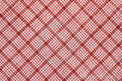 Diagonal checked cotton fabric