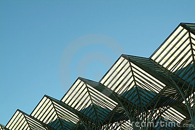 Diagonal steel roof structure