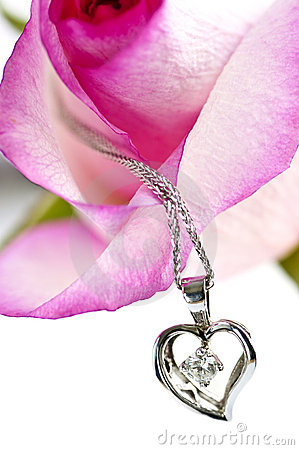 Free Diamond Necklace On Rose Royalty Free Stock Photography - 7810857