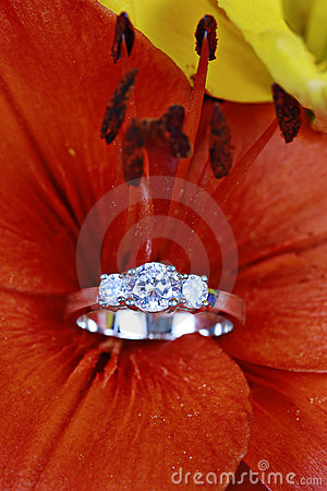 Free Diamond Ring In Flower  Stock Photo - 10614230