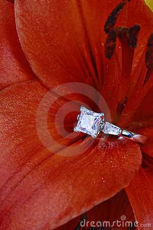 Free Diamond Ring In Flower Stock Photography - 10614262