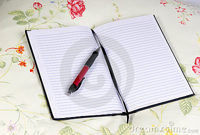 Diary and Pen 4