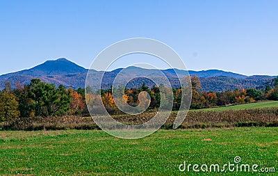 Website Design Montpelier Vermont