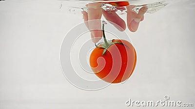 Die Hand des Menschen versucht, eine Tomate in der Mitte auf weißem Grund zu fangen stock video