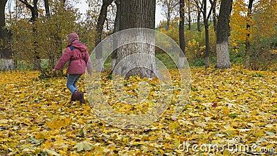 die jahreszeit, herbst kinder, die in der natur spielen stock footage - video von spaß, herbst