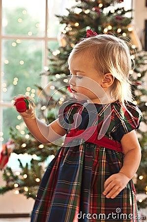 Die Weihnachtsverzierung