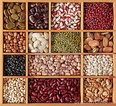 Free Different Beans Royalty Free Stock Photography - 23289447
