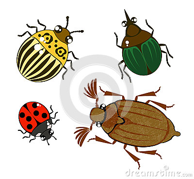 Free Different Cartoon Beetles Stock Images - 27742904