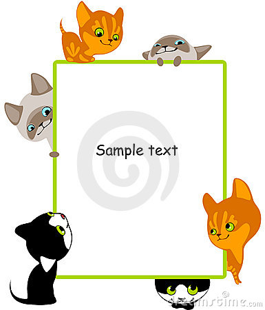 Different kittens. Place for your text