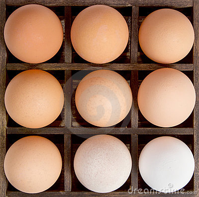 Free Different Shades Of Eggs,concept Diversity. Royalty Free Stock Images - 23289099