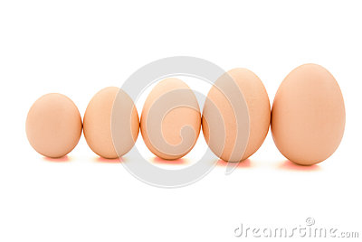 Different size eggs