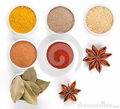 Different spices in bowls  on white.