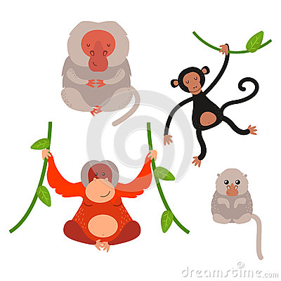 Different types of monkeys rare animal vector set. Vector Illustration