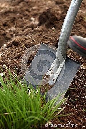 Free Digging Stock Image - 17968781