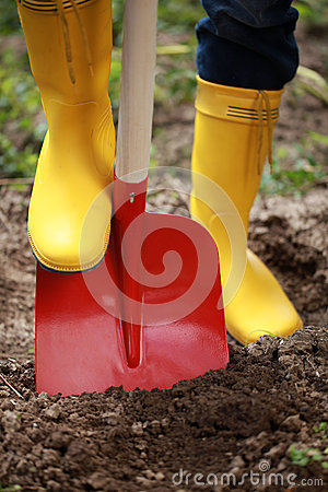 Digging soil with a shovel