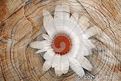 Digiart - A Flower