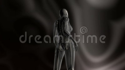 Digital Animation of the female human Anatomy Stock Photo