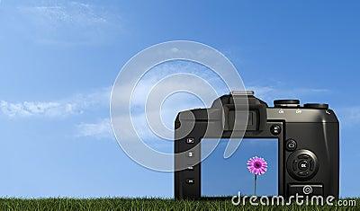 Digital camera on grass against blue sky