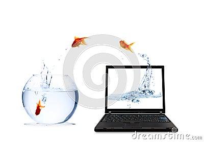 Digital fish