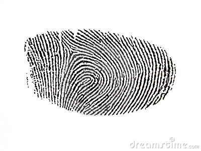 Digitised Fingerprint