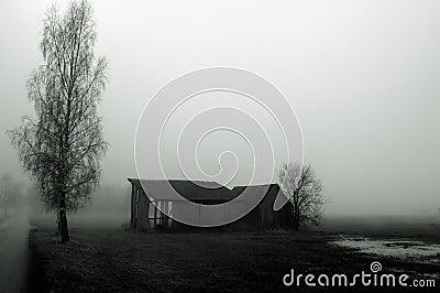 Dilapidated barn in fog