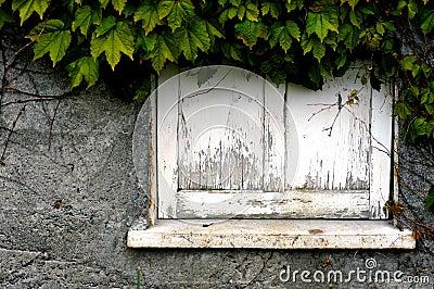 Dilapidated window sill