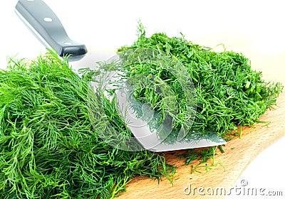 Dill herb cut