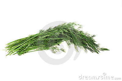 Dill. Isolated object.