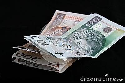 Dinero en circulación polaco
