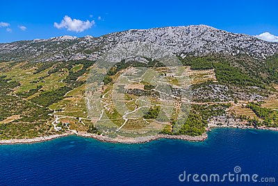 Dingac vineyards on Peljesac peninsula