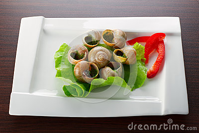 Dinner with snails on the plate