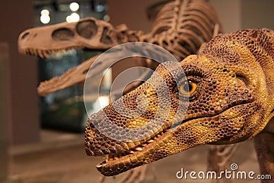 Dinosaur Editorial Stock Image