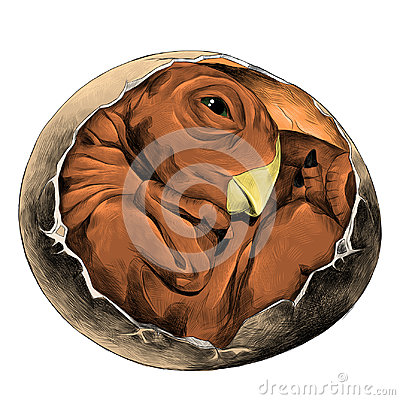 Dinosaur egg hatched sketch vector graphics Vector Illustration