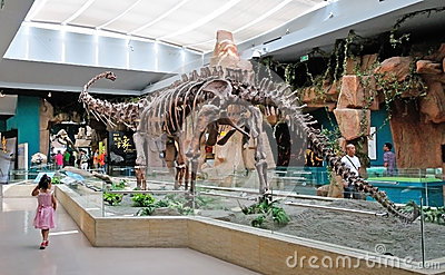 Dinosaur Fossil Editorial Stock Photo