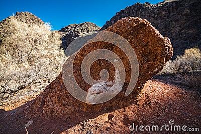 Dinosaur head fossil in Charyn Canyon