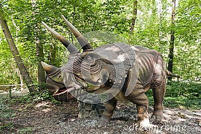 Dinosaur - Triceratops