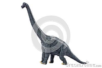 Dinosaur on white background