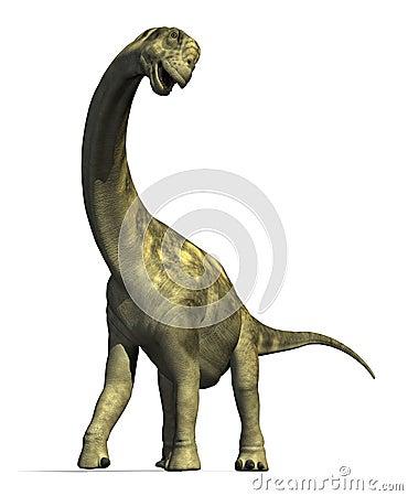 Dinosaurus 2 van Camarasaurus