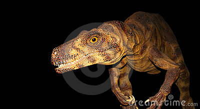 Dinozaur prowl