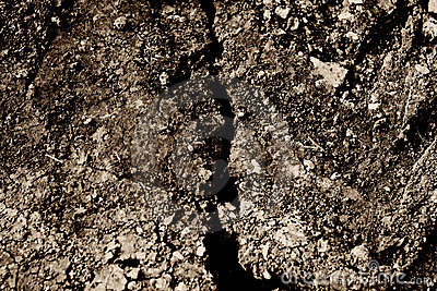 Dry cracked dirt background texture Cracked Dirt Background