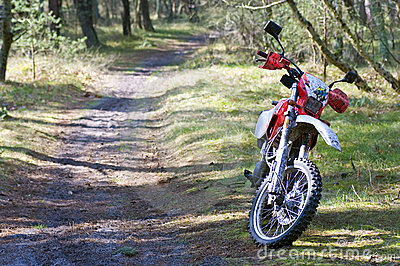 Dirt bike in forest