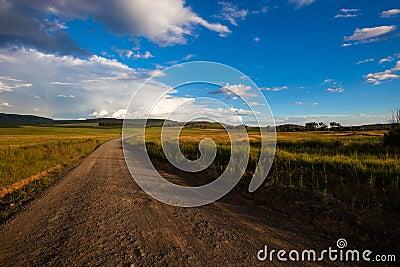 Dirt Road Color Landscape