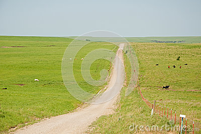 Dirt road and a fence splitting a wide open prairi