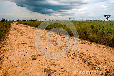 A Dirt Road in the Plains