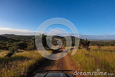 Dirt Road Wildlife Safari Vehicle