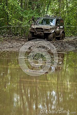 Dirt Track Race