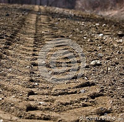 Dirt Tracks
